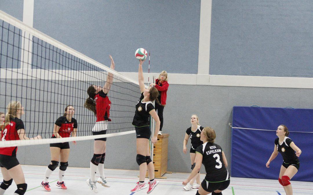 Volleyballtrainer (m/w) für unsere Damenmannschaft gesucht